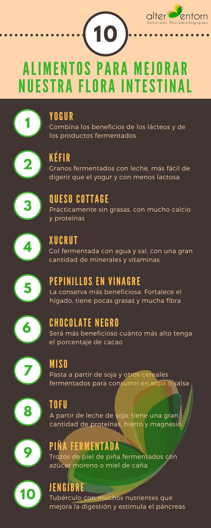 10 Alimentos Para Mejorar La Flora Intestinal Alter Entorn