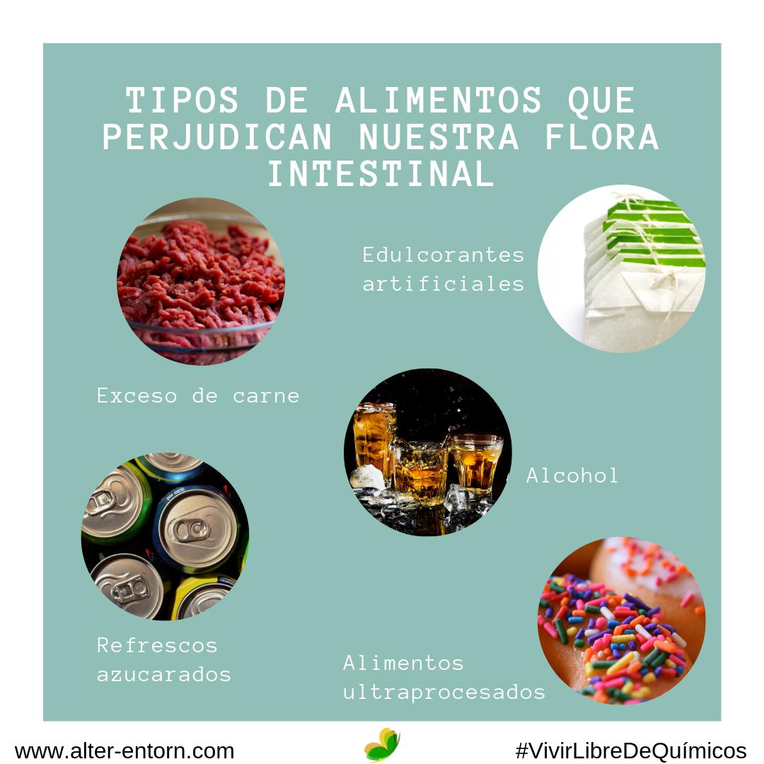 Los Tipos De Alimentos Que Perjudican Nuestra Flora Intestinal Alter Entorn