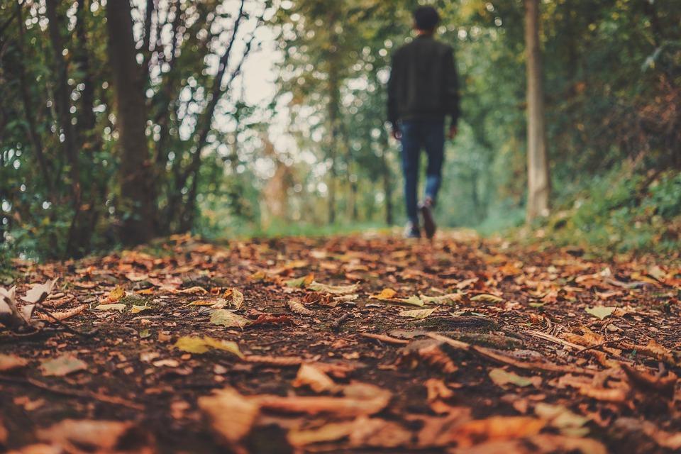 Empieza a tomar un complemento alimenticio para afrontar la astenia de otoño